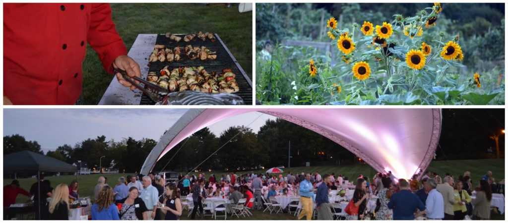 Garden Party Event Collage 5946843