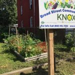 AARP Community Challenge Program Helps KNOX Renovate Community Garden